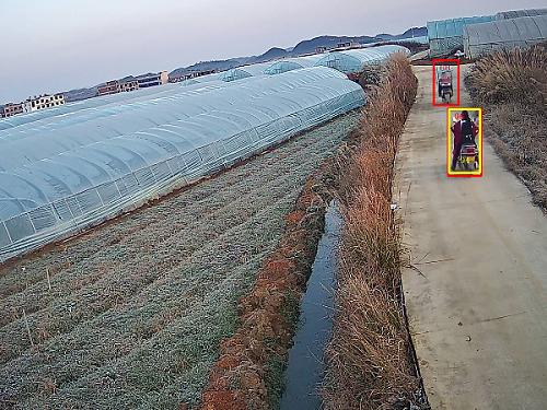 有了果园智能视频监控系统,从此只需要开心地种果实