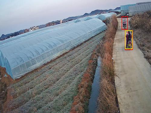 农业大棚安装视频监控系统怎么选型?看了这个你就知道了